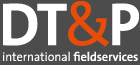 DT&P International – Market research institute Retina Logo